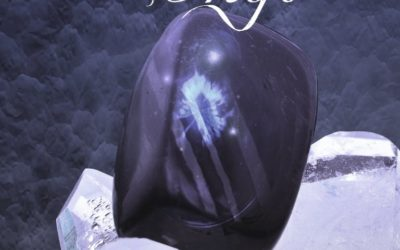 Lux tome 2 : Onyx