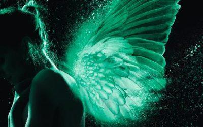 Les ailes d'émeraude tome 1